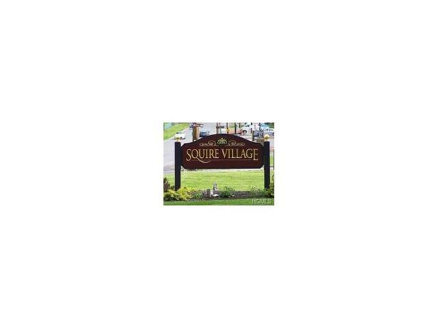 24 Manuche Drive #1, New Windsor, NY 12553 (MLS #4746400) :: William Raveis Baer & McIntosh
