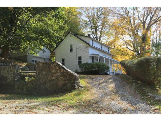 511 Route 22, North Salem, NY 10560 (MLS #4746424) :: Mark Boyland Real Estate Team