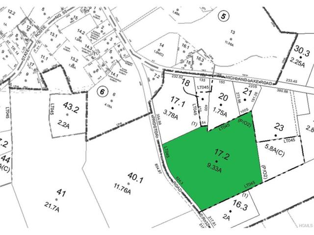 Proctor Road, Eldred, NY 12732 (MLS #4746466) :: Mark Boyland Real Estate Team