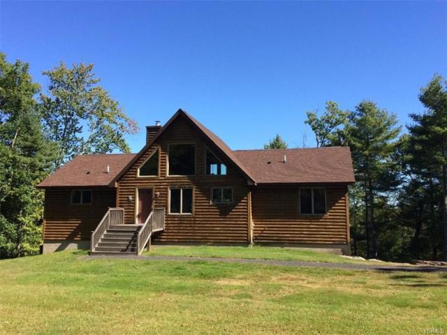 11 Lloyd, Monticello, NY 12701 (MLS #4746600) :: Mark Boyland Real Estate Team