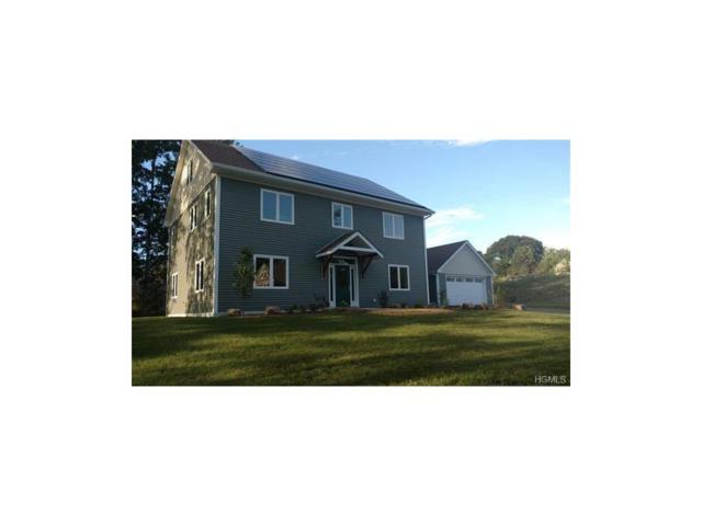 10 Taylor Street, New Paltz, NY 12561 (MLS #4746663) :: Mark Boyland Real Estate Team