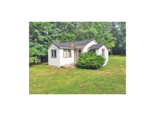 50 Eldred Yulan Road, Eldred, NY 12732 (MLS #4746673) :: Mark Boyland Real Estate Team