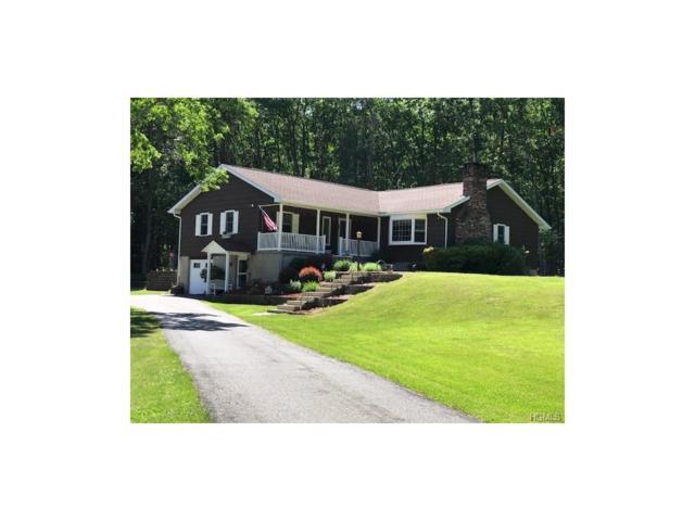 4 Leavenworth Road, Eldred, NY 12732 (MLS #4746712) :: Mark Boyland Real Estate Team