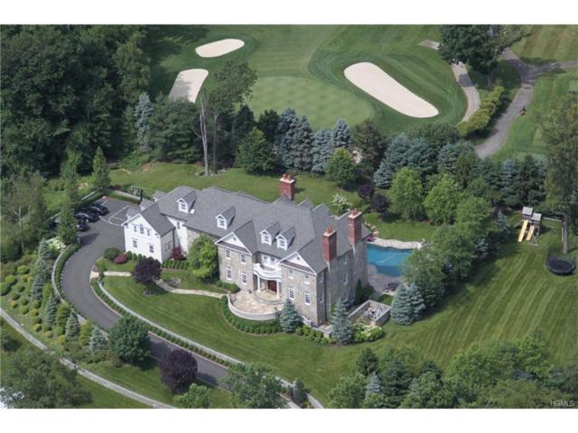 59 Carolyn Place, Chappaqua, NY 10514 (MLS #4747055) :: Mark Boyland Real Estate Team