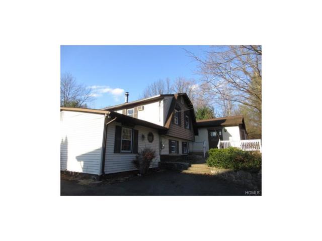 29 Shepherd Avenue, Greenwood Lake, NY 10925 (MLS #4747189) :: William Raveis Baer & McIntosh