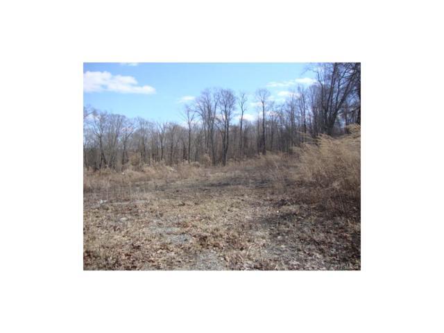 17 Palma Road, Somers, NY 10589 (MLS #4747490) :: Mark Boyland Real Estate Team