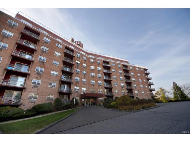1 Lakeview Drive 3P, Peekskill, NY 10566 (MLS #4747530) :: Mark Boyland Real Estate Team