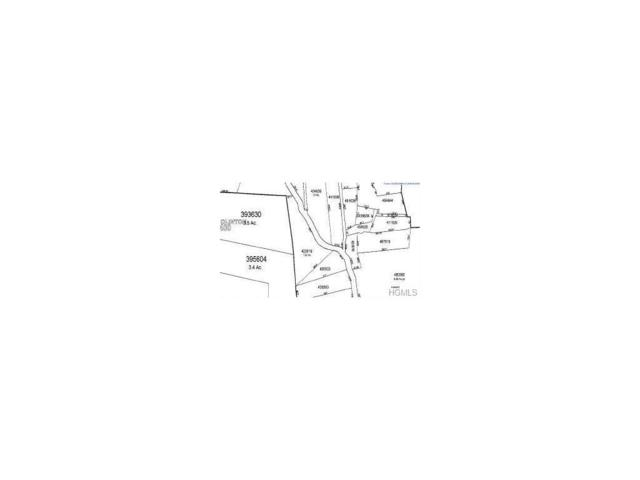 Oak Tree Road, Rhinebeck, NY 12572 (MLS #4747590) :: Mark Boyland Real Estate Team