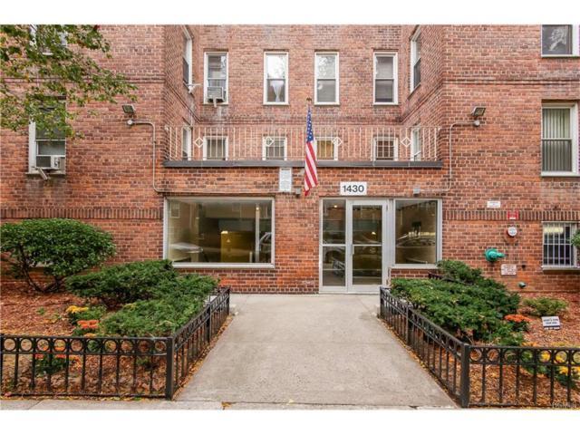 1430 Thieriot Avenue 2N, Bronx, NY 10460 (MLS #4747601) :: Mark Boyland Real Estate Team
