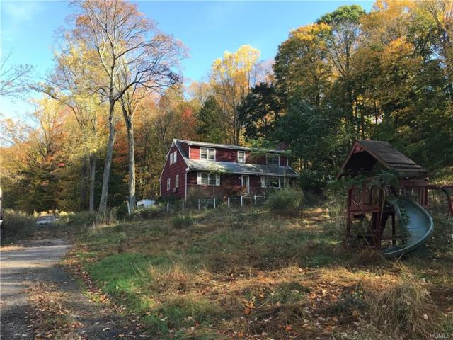 13 Ryder Road, Ossining, NY 10562 (MLS #4747758) :: William Raveis Legends Realty Group
