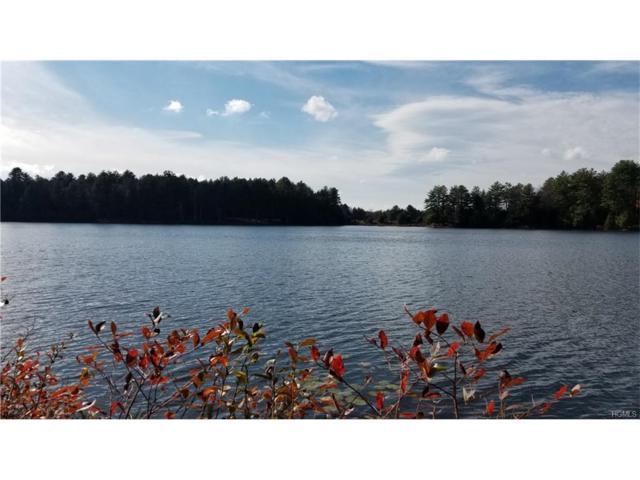 Lot 19 Lake Ridge Road, Bethel, NY 12720 (MLS #4747845) :: Michael Edmond Team at Keller Williams NY Realty
