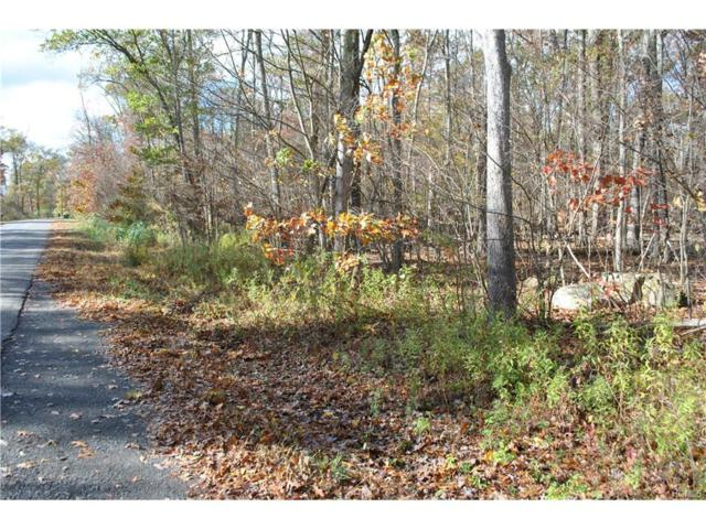 117 Stella Drive, Gardiner, NY 12525 (MLS #4747948) :: Michael Edmond Team at Keller Williams NY Realty