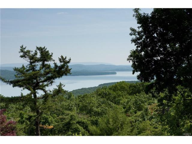 0 Ohayo Mountain Road, Woodstock, NY 12498 (MLS #4748004) :: Michael Edmond Team at Keller Williams NY Realty