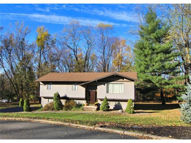 820 Tulip Drive, Valley Cottage, NY 10989 (MLS #4748221) :: William Raveis Baer & McIntosh