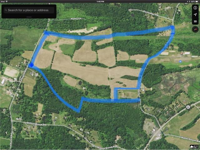 Schnieder Road, Hudson, NY 12541 (MLS #4748330) :: Stevens Realty Group