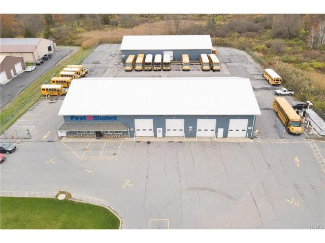 17 Industrial Drive, Florida, NY 10921 (MLS #4748401) :: Mark Boyland Real Estate Team