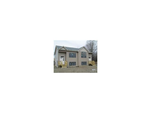 6/8 Tuthill Road, Blooming Grove, NY 10914 (MLS #4748501) :: William Raveis Baer & McIntosh