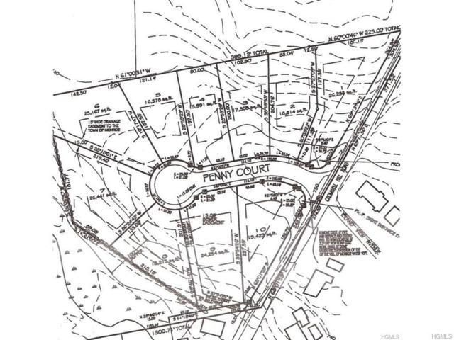 8 Penny Court, Monroe, NY 10950 (MLS #4748529) :: Mark Boyland Real Estate Team