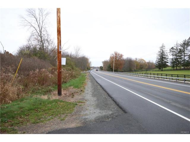 0 State Route 211 Ws, Montgomery, NY 12549 (MLS #4748676) :: William Raveis Baer & McIntosh