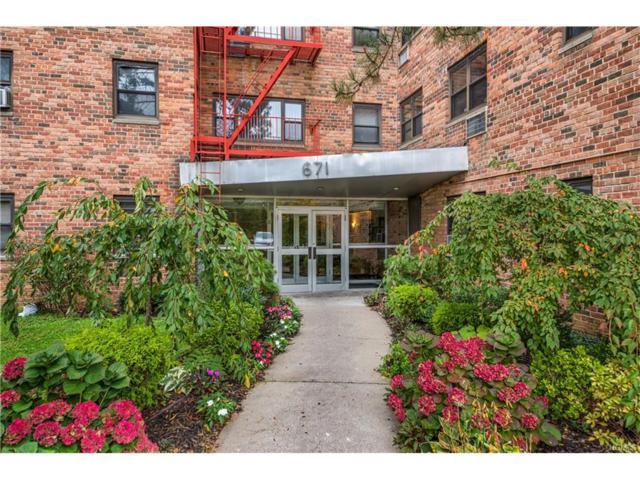 671 Bronx River Road 4C, Yonkers, NY 10704 (MLS #4749112) :: Mark Boyland Real Estate Team