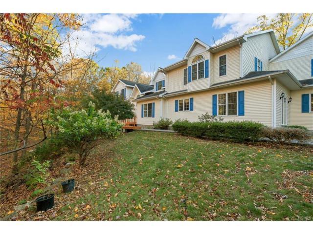 23 Round Hill Road, Washingtonville, NY 10992 (MLS #4749178) :: William Raveis Baer & McIntosh