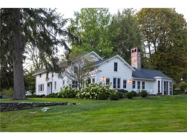 474-482 Deep Hollow Road, Millbrook, NY 12545 (MLS #4749414) :: Mark Boyland Real Estate Team