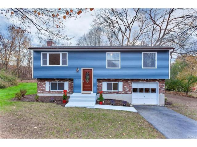 4 Continental, Washingtonville, NY 10992 (MLS #4749444) :: William Raveis Baer & McIntosh