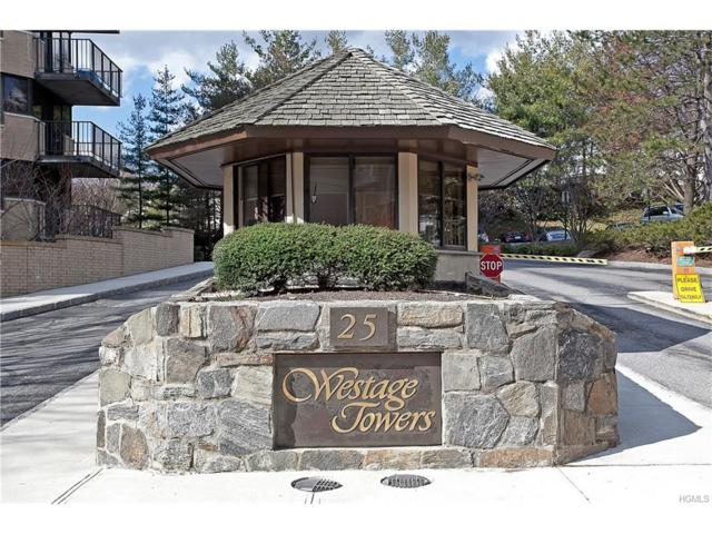 25 Rockledge Avenue #214, White Plains, NY 10601 (MLS #4749594) :: Mark Boyland Real Estate Team