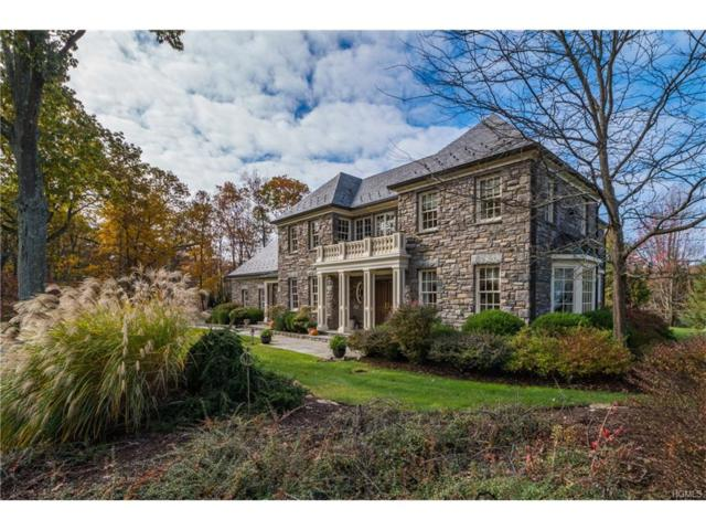 75 Summit Road, Tuxedo Park, NY 10987 (MLS #4749645) :: William Raveis Baer & McIntosh