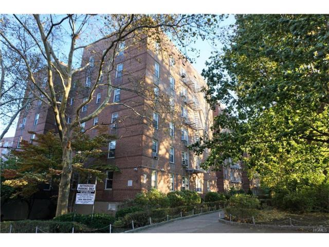 29 Abeel Street 3K, Yonkers, NY 10705 (MLS #4749661) :: Mark Boyland Real Estate Team