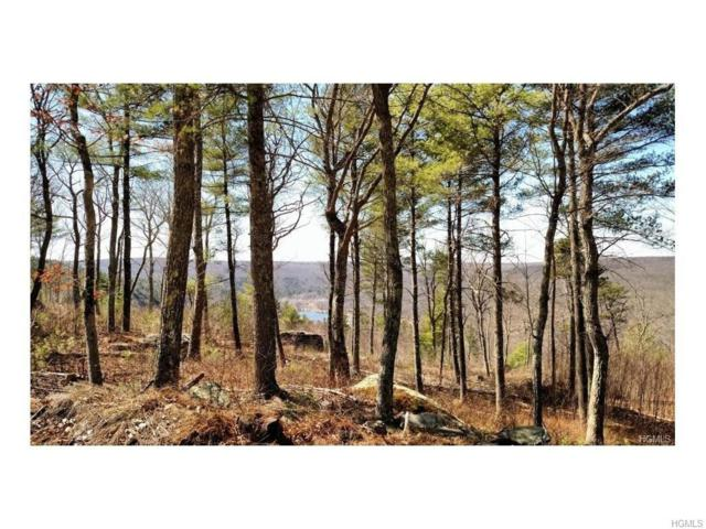 Lot #3 Eagle View Road, Narrowsburg, NY 12764 (MLS #4749667) :: Mark Boyland Real Estate Team