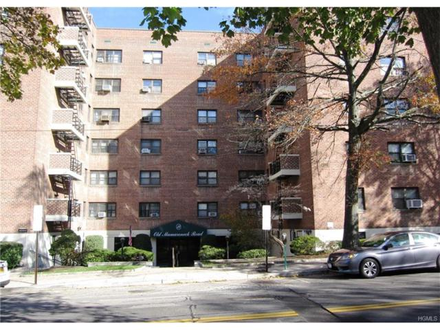 19 Old Mamaroneck Road 2E, White Plains, NY 10605 (MLS #4749730) :: William Raveis Legends Realty Group