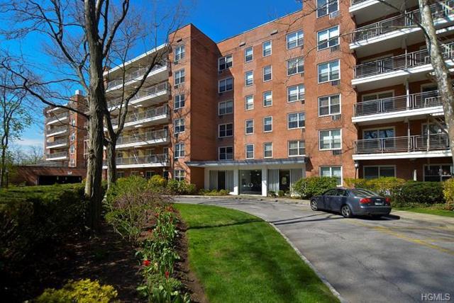 177 E Hartsdale Avenue 3V, Hartsdale, NY 10530 (MLS #4749736) :: Mark Boyland Real Estate Team