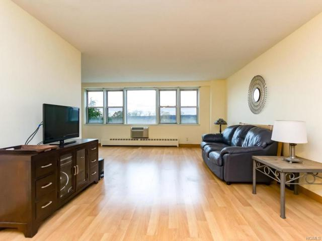 5700 Arlington Avenue 6O, Bronx, NY 10471 (MLS #4749885) :: Mark Boyland Real Estate Team