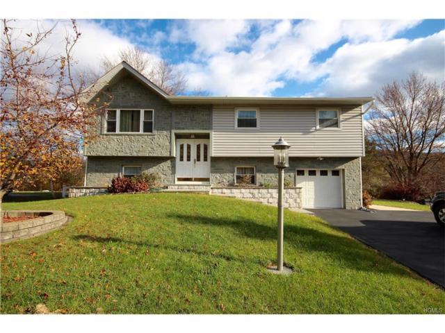 359 Lake Shore Drive, Monroe, NY 10950 (MLS #4749951) :: William Raveis Baer & McIntosh