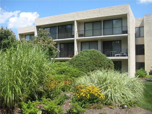 152 Overlook Avenue 2F, Peekskill, NY 10566 (MLS #4750143) :: Mark Boyland Real Estate Team