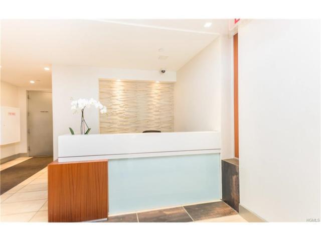 3585 Greystone Avenue E3e, Bronx, NY 10463 (MLS #4750276) :: Mark Boyland Real Estate Team