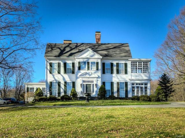 18 Golden Hill Avenue, Goshen, NY 10924 (MLS #4750612) :: William Raveis Baer & McIntosh