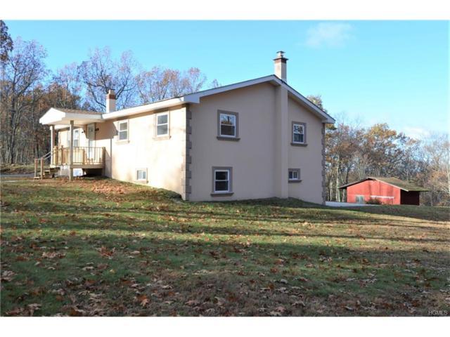1251 N Anson Road, Stanfordville, NY 12581 (MLS #4750833) :: Mark Boyland Real Estate Team