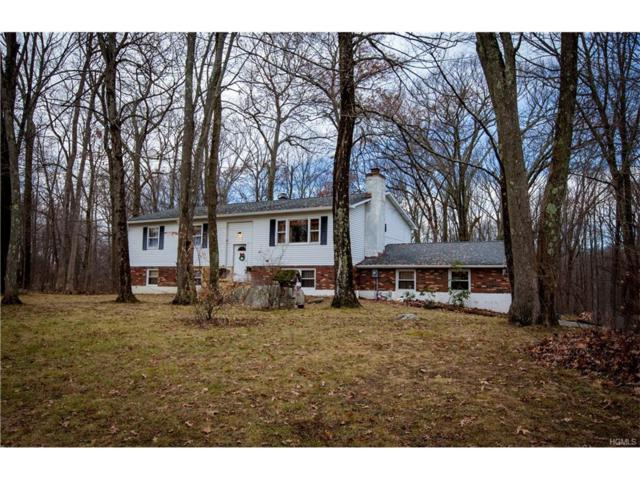 78 Ritter Road, Stormville, NY 12582 (MLS #4750964) :: Mark Boyland Real Estate Team