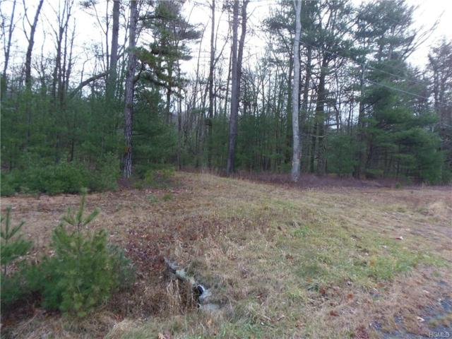 1474  Lot#5 Route 42, Forestburgh, NY 12777 (MLS #4751138) :: Mark Seiden Real Estate Team