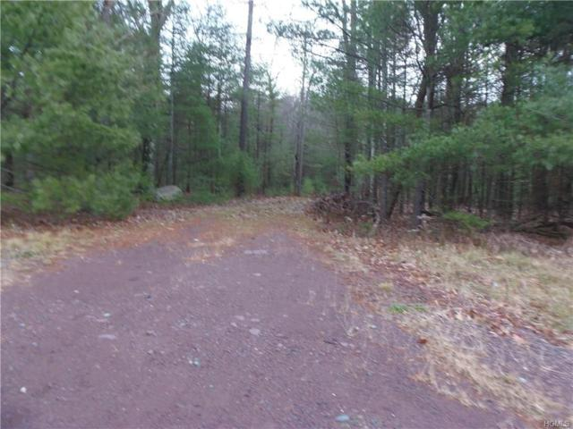 Lot#7 Route 42, Forestburgh, NY 12777 (MLS #4751142) :: Mark Boyland Real Estate Team