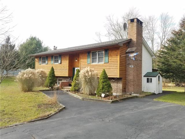 20 Valley Road, Forestburgh, NY 12777 (MLS #4751173) :: Michael Edmond Team at Keller Williams NY Realty