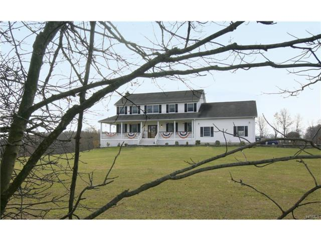 637 E Kaisertown Road, Montgomery, NY 12549 (MLS #4751231) :: William Raveis Baer & McIntosh