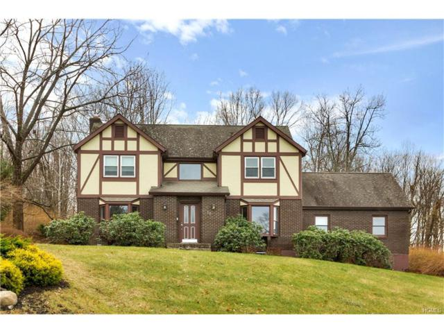 10 Holland Court, Monroe, NY 10950 (MLS #4751255) :: William Raveis Baer & McIntosh