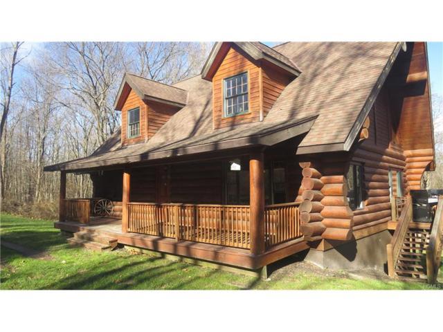 3285 Route 82, Verbank, NY 12585 (MLS #4751266) :: Mark Boyland Real Estate Team