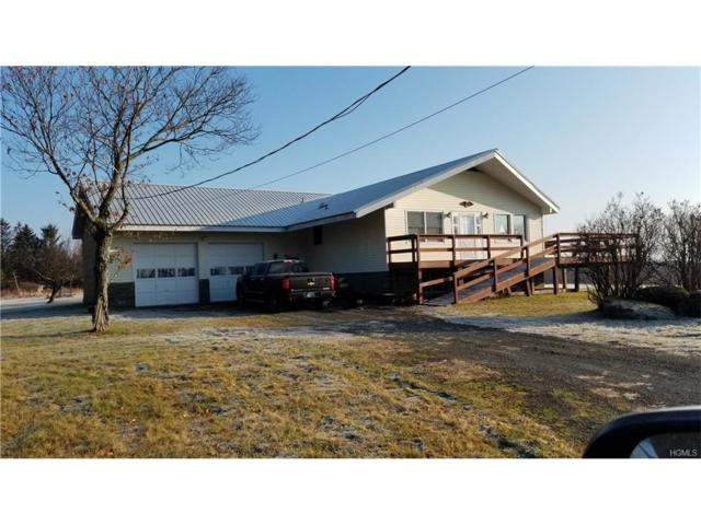 877 Shandelee Road, Livingston Manor, NY 12758 (MLS #4751615) :: Mark Boyland Real Estate Team