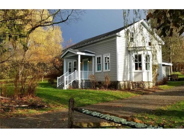 1384 Arnolds Mills Road, Ghent, NY 12075 (MLS #4751634) :: Mark Boyland Real Estate Team