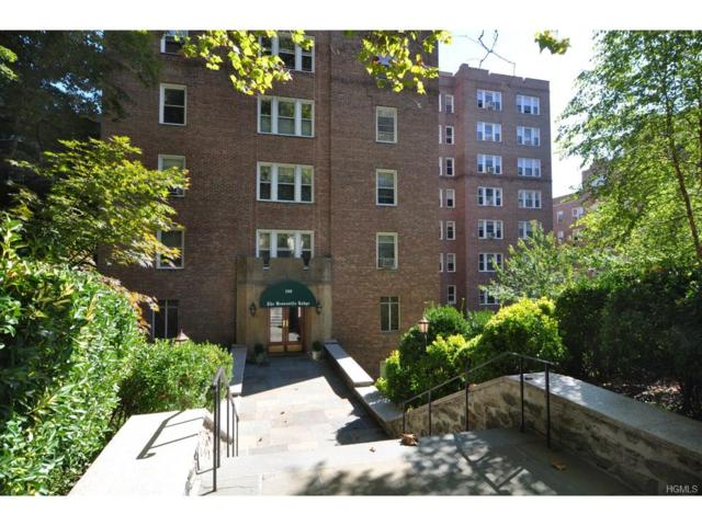 280 Bronxville Road 8N, Bronxville, NY 10708 (MLS #4751760) :: William Raveis Legends Realty Group
