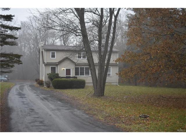 51 Dubois Road, New Paltz, NY 12561 (MLS #4751866) :: Mark Boyland Real Estate Team